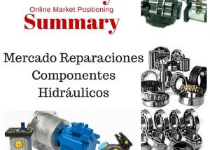 ISMP Reparaciones Componentes Hidráulicos